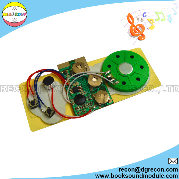 Sound chipproducts recordable sound chip for greeting card m4hsunfo